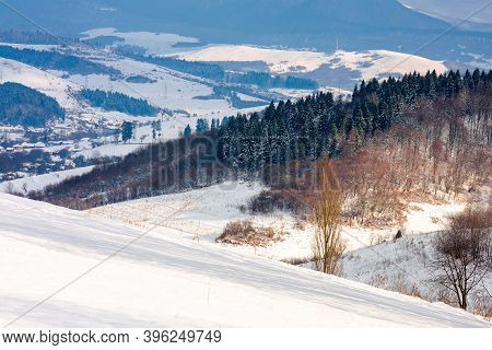 Rural Landscape In Wintertime. Trees On The Snow Covered Hill. Beautiful Scenery Of Carpathian Mount