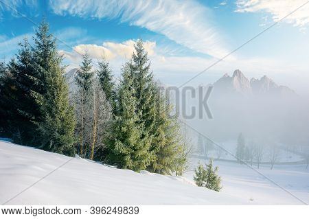 Spruce Forest On A Snow Covered Hill. Beautiful Comosite Mountain Landscape In Winter. Misty Weather