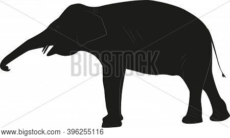 Black Silhouette Of An Elephant On A White Background, Resizable.
