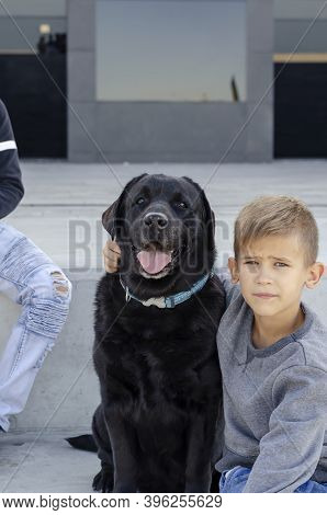 Love Pets Concept. Child And Dog. An Eight-year-old Boy In His Arms With  Black Labrador Looking Int