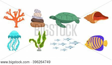 Underwater Life Collection. Undersea Icon Set. Turtle, Jellyfish, Coral, Shell, Waterweed, Butterfly