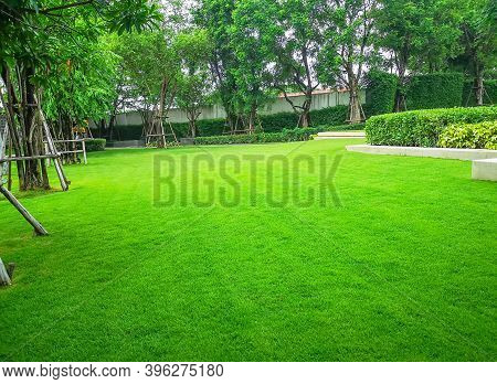 Smooth And Fresh Green Grass Lawn As A Carpet In Garden Backyard, Good Care Maintenance Landscapes D