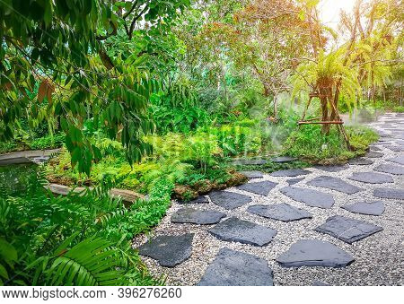 Free Form Pattern Of Black Stone Walkway And White Gravel In A Tropical Backyard Garden, Greenery Fe