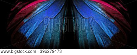 Wings Of A Butterfly Ulysses. Wings Of A Butterfly Texture Background. Closeup. Selective Focus