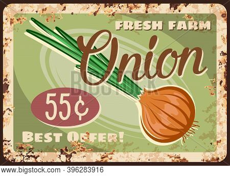 Onion Vegetable Metal Plate Rusty, Market Price Retro Poster For Farm Veggies And Greenery, Vector.