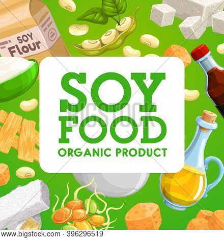 Soy Food Organic Products, Vector Soybean Tofu Cheese, Sauce And Milk, Oil, Meat Or Skin, Tempeh And