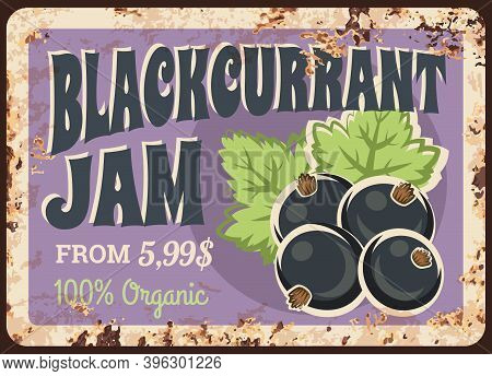 Blackcurrant Jam Rusty Metal Plate, Vector Fresh Berry Vintage Rust Tin Sign. Price Tag For Market O