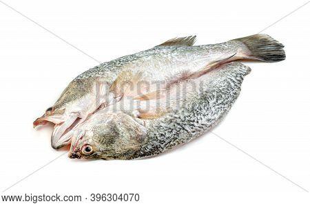 Barramundi Or Seabass Fish Isolated On White Background