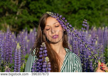 Gorgeous Beautiful Girl Eyes Closed Holds Lupine Flower Touching Her Face On Blooming Meadow, Mergin