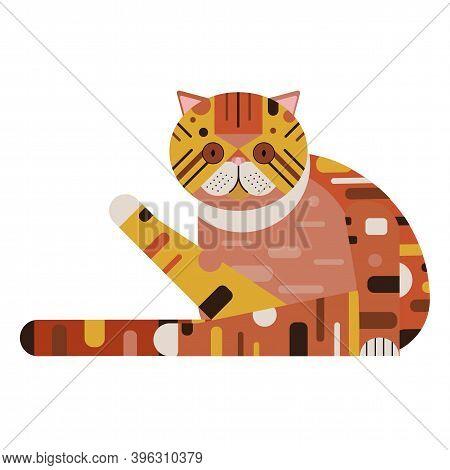 Exotic Shorthair Persian Cat In Flat Design