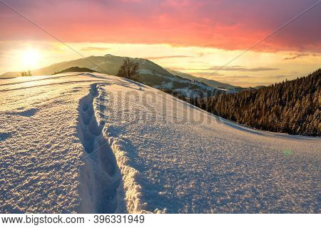 Human Footprint Track Path In White Deep Snow Through Empty Field With Woody Dark Mountain Range And