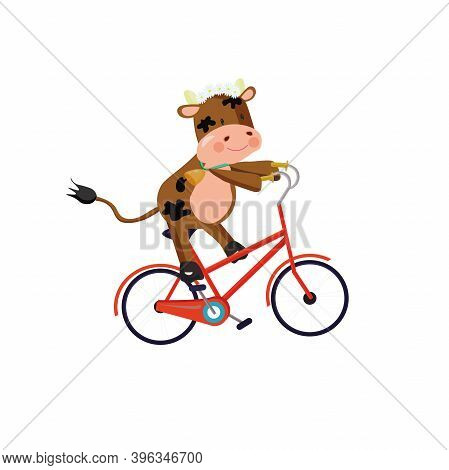 Bull Wearing Chamomile Wreath Riding A Bike. Vector Illustration.