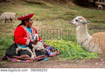 Peru village - 12 October 2018 : Woman in national clothes holding lamas