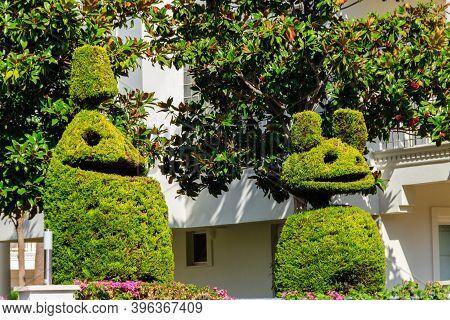 Beautiful Funny Bush Figures In A Garden