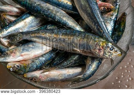 Strong Men's Hands Preparing A Skewer Of Fresh Salty Sardines In A Glass Bowl With A Cane. Healthy F