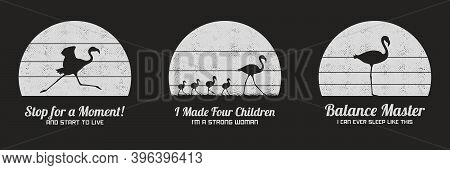 Set Of Black And White Retro Illustrations With Silhouettes Of Flamingos. Animal Mother And Children