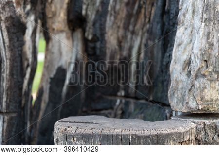 Stand Against A Charred Wood Background. A Stump Against A Background Of Burnt Wood. Background Blur