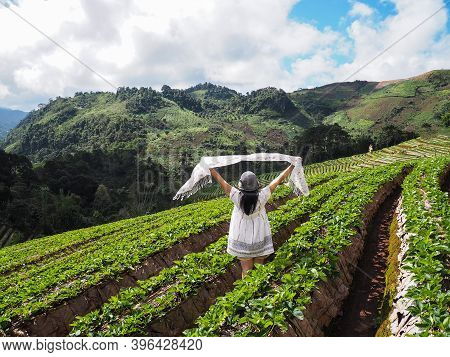 Back View Of Happy Woman Tourist Raise Arms In Strawberry Farm Over Mountain View And Blue Sky Lands