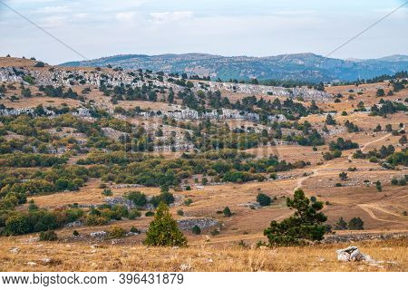 Bright Autumn Day In The Mountains. Steppe Landscape On A Mountain Plateau With Low Trees.