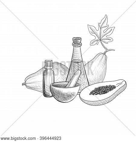 Vector Drawing Papaya Seed Oil, Bottles Of Vegetable Oil, Papaya Fruits, Mortar And Pestle At White