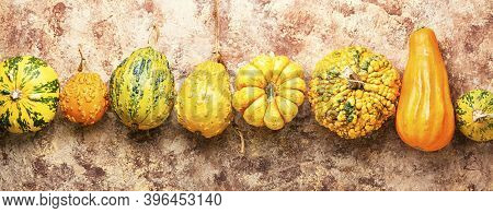 Set Of Decorative Pumpkins