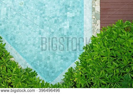 Top View Of Blue Water In Swimming Pool With Green Bush And Wooden Footpath.