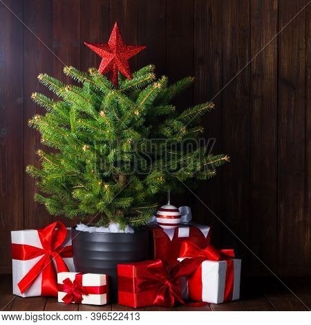 Merry christmas card with small christmas tree with star and gifts