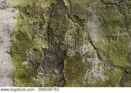 Gray Green Stone Texture From Old Concrete Wall In The Dirty Foundation And Cracks