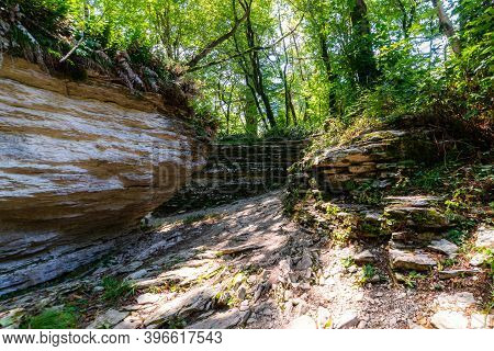 Gap Or Cleft In Ground In Mysterious Forest. Surroundings Of The Hiking Trail Through The Rainforest