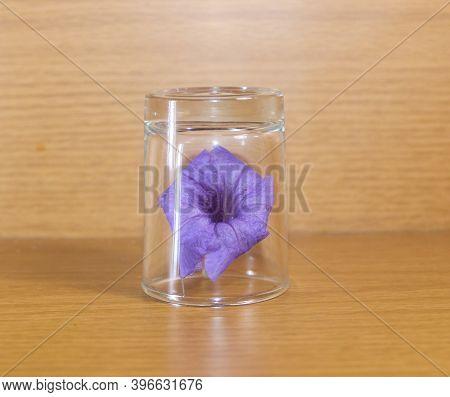 Beautiful Purple Ruellia In Small Glass On The Table