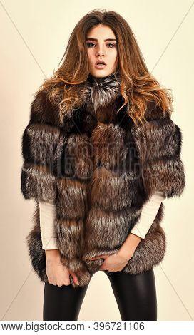 Fur Fashion Concept. Winter Elite Luxury Clothes. Female Brown Fur Coat. Fur Store Model Posing In S