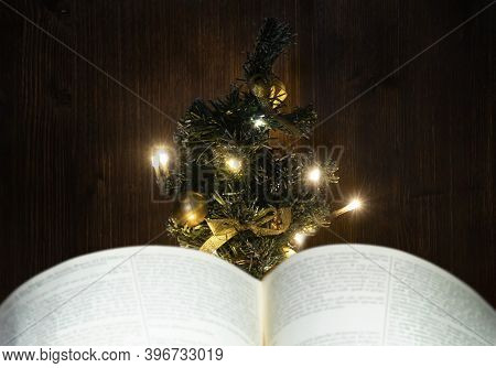 Reading In Front Of The Christmas Tree