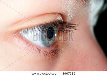 Blue Eye Closeup
