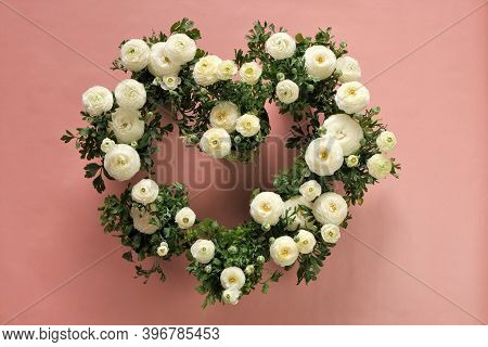 Ranunculus Flower White On Pink Background.buttercup Flowers.flower Heart. Ranunculus Flowers Bouque