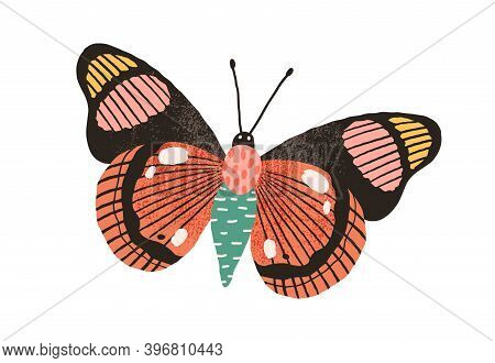 Butterfly With Bright Wings And Antennae Isolated On White Background. Gorgeous Flying Moth. Beautif