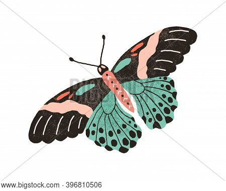 Tropical Butterfly With Colorful Wings And Antennae Isolated On White Background. Pretty Flying Moth
