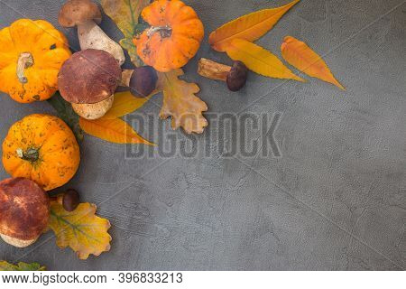 Pumpkins, Ceps, And Fall Leaves On Gray Stone Table, With Copy Space