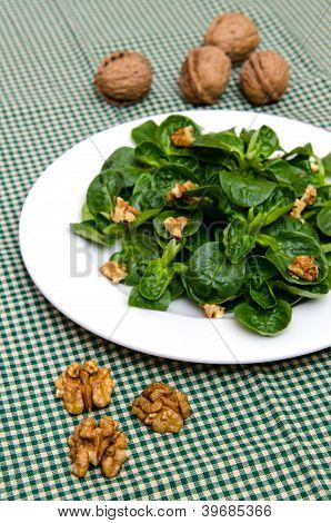Walnuts and green corn lettuce on a white plate poster