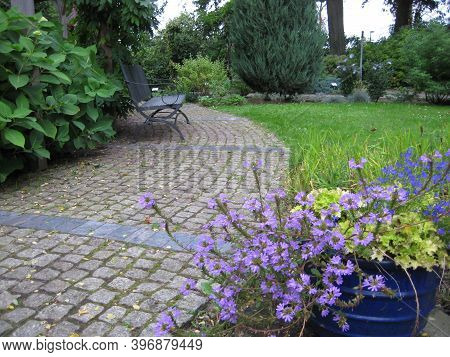 Macro Photo With Decorative Landscape Background In A European Garden With Landscape Design With Flo