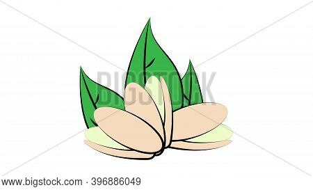 Nuts On A White Background, Vector Illustration, Neon. Nuts Lie On The Ground, Under Green Oblong Le