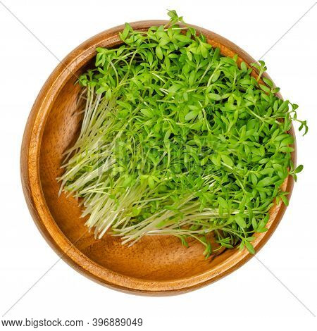 Garden Cress Sprouts In A Wooden Bowl. Cress, Pepperwort Or Peppergrass. Green Seedlings And Young P