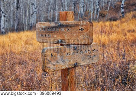 Trail Sign On The Y Trail, Provo Peak Hiking Trail By Y Mountain, Up Slide Canyon And Slate Canyon,