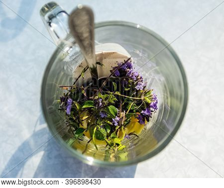 Transparent Mug With Tea. Brewing Tea In A Bag. Brewing Herbal Tea. Herbal Tea.