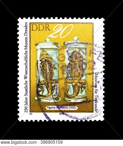 East Germany - Circa 1978 : Cancelled Postage Stamp Printed By East Germany, That Shows Turkestan Ro
