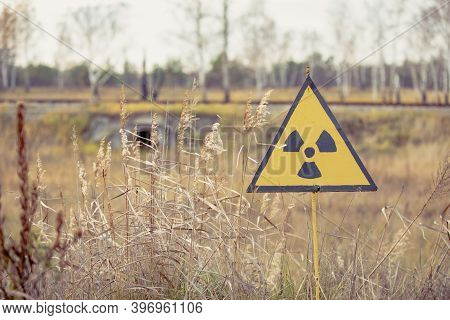 Ionizing Radiation Sign Next To Red Forest In Chernobyl Nuclear Power Plant Zone Of Alienation, Ukra