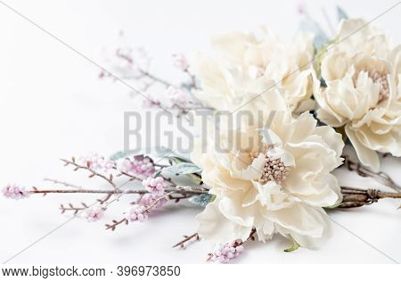 Colorful Flower. Flower In The Garden On A Sunny Summer Or Spring Day. Flower For Beauty Postcard De