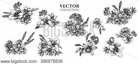 Flower Bouquet Of Black And White Anemone, Lavender, Rosemary Everlasting, Phalaenopsis, Lily, Iris