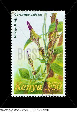 Kenya - Circa 1983 : Cancelled Postage Stamp Printed By Kenya, That Shows Ceropegia Ballyana, Circa