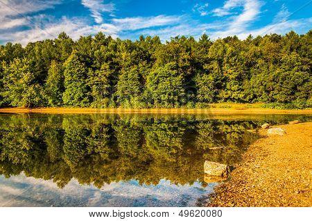 Reflections along the shore of Lake Marburg Codorus State Park Pennsylvania. poster