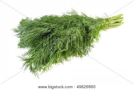 Fresh dill isolated over white